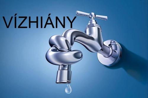 vizhiany